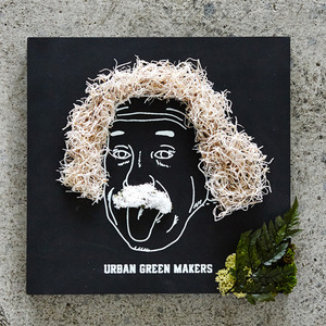 어반그린마커스 GREEN ART KITS 02_ EINSTEIN