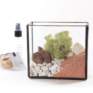 어반그린마커스 GLASS BRASS BOX TERRARIUM