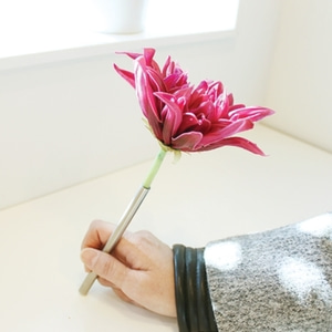 beautiful dahlia pen 플라워 펜